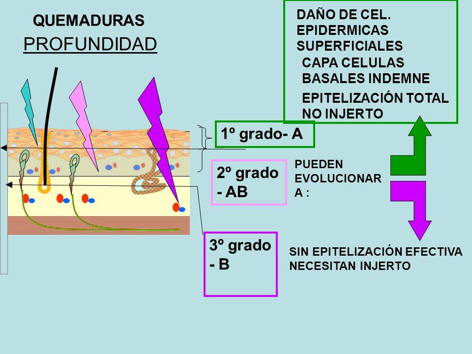 PROFUNDIDAD QUEMADURAS 1º grado- A 2º grado - AB 3º grado - B