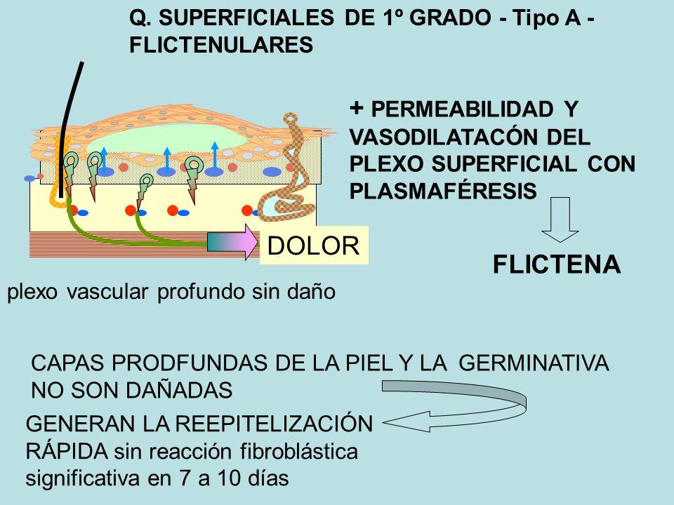 Q. SUPERFICIALES DE 1º GRADO - Tipo A - FLICTENULARES