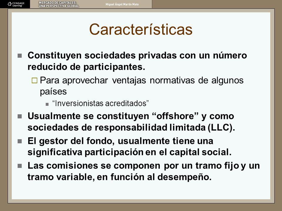Características Constituyen sociedades privadas con un número reducido de participantes. Para aprovechar ventajas normativas de algunos países.