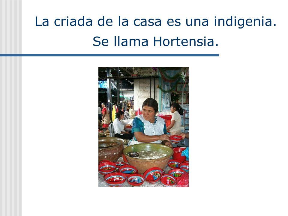 La criada de la casa es una indigenia. Se llama Hortensia.