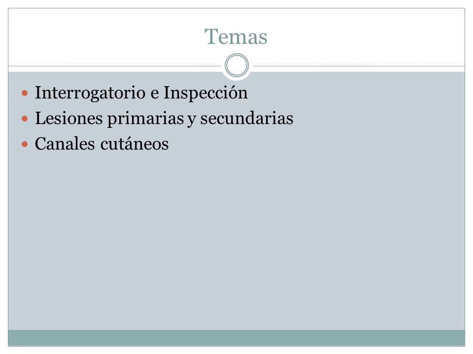 Temas Interrogatorio e Inspección Lesiones primarias y secundarias