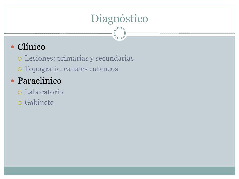 Diagnóstico Clínico Paraclínico Lesiones: primarias y secundarias