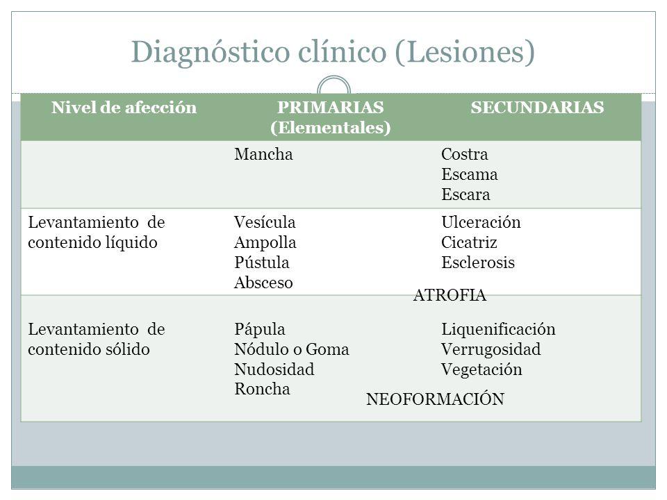 Diagnóstico clínico (Lesiones)