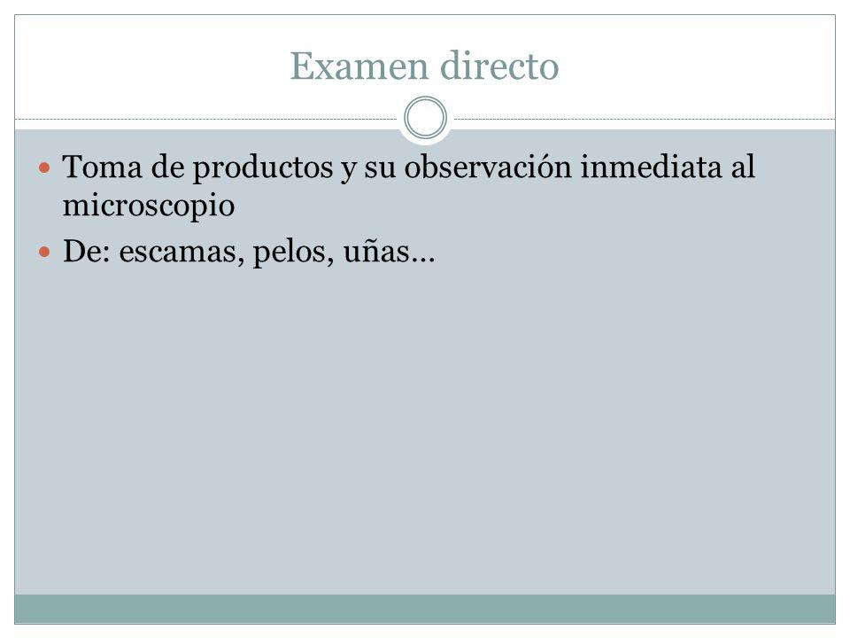 Examen directo Toma de productos y su observación inmediata al microscopio.