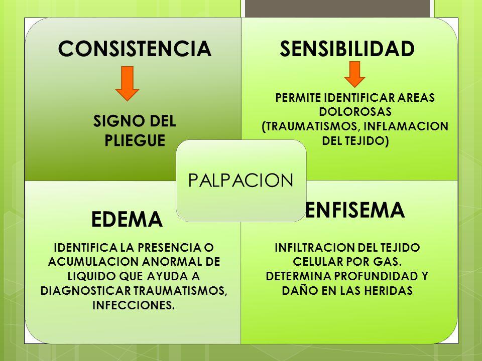 CONSISTENCIA SENSIBILIDAD ENFISEMA EDEMA