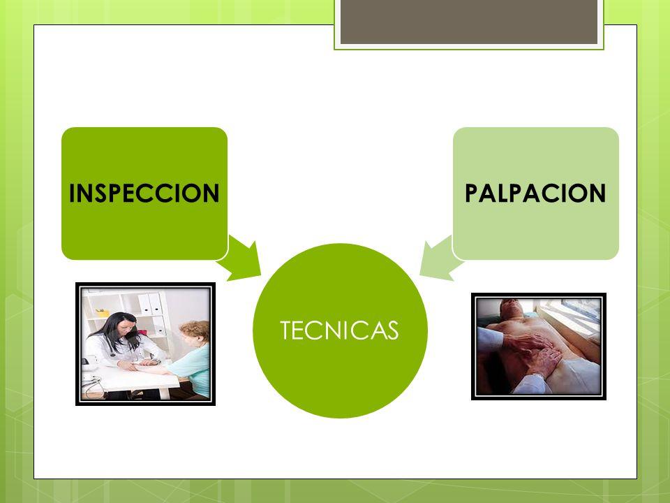 TECNICAS INSPECCION PALPACION