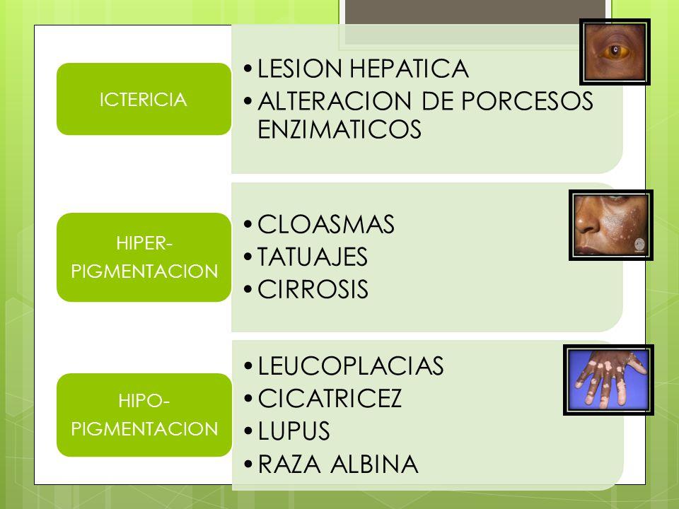 ALTERACION DE PORCESOS ENZIMATICOS