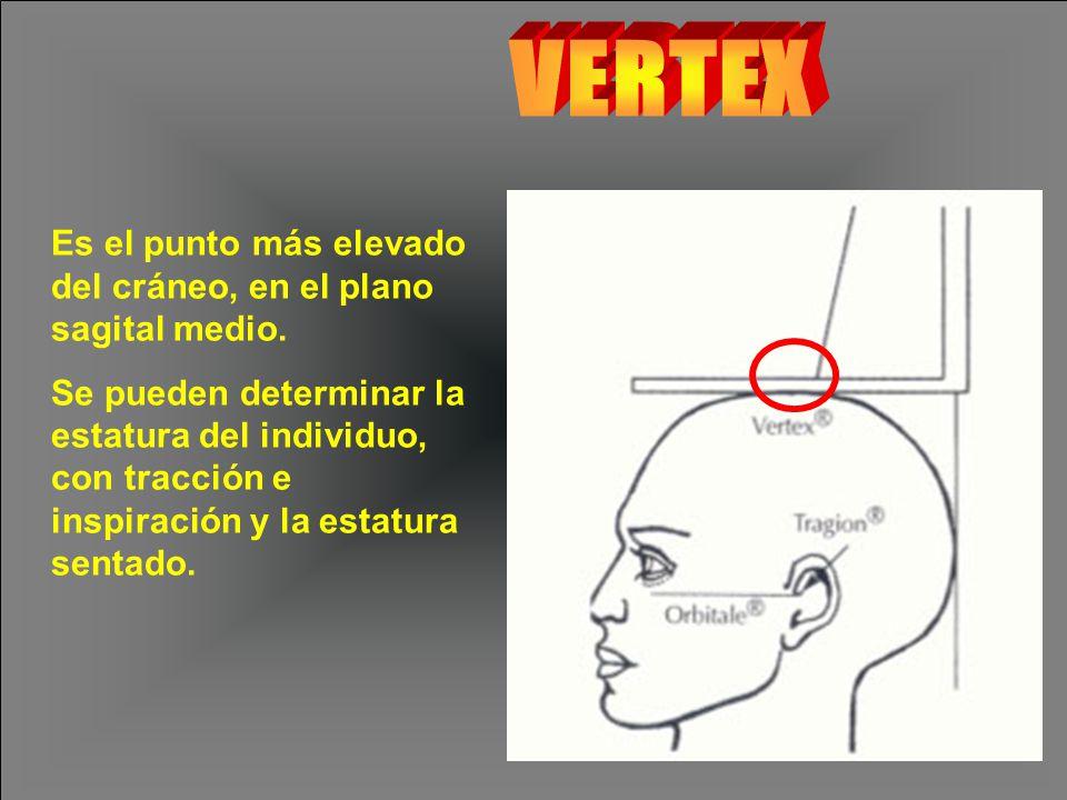 Es el punto más elevado del cráneo, en el plano sagital medio.
