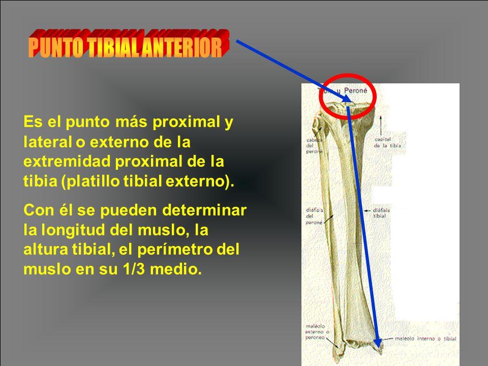PUNTO TIBIAL ANTERIOR Es el punto más proximal y lateral o externo de la extremidad proximal de la tibia (platillo tibial externo).