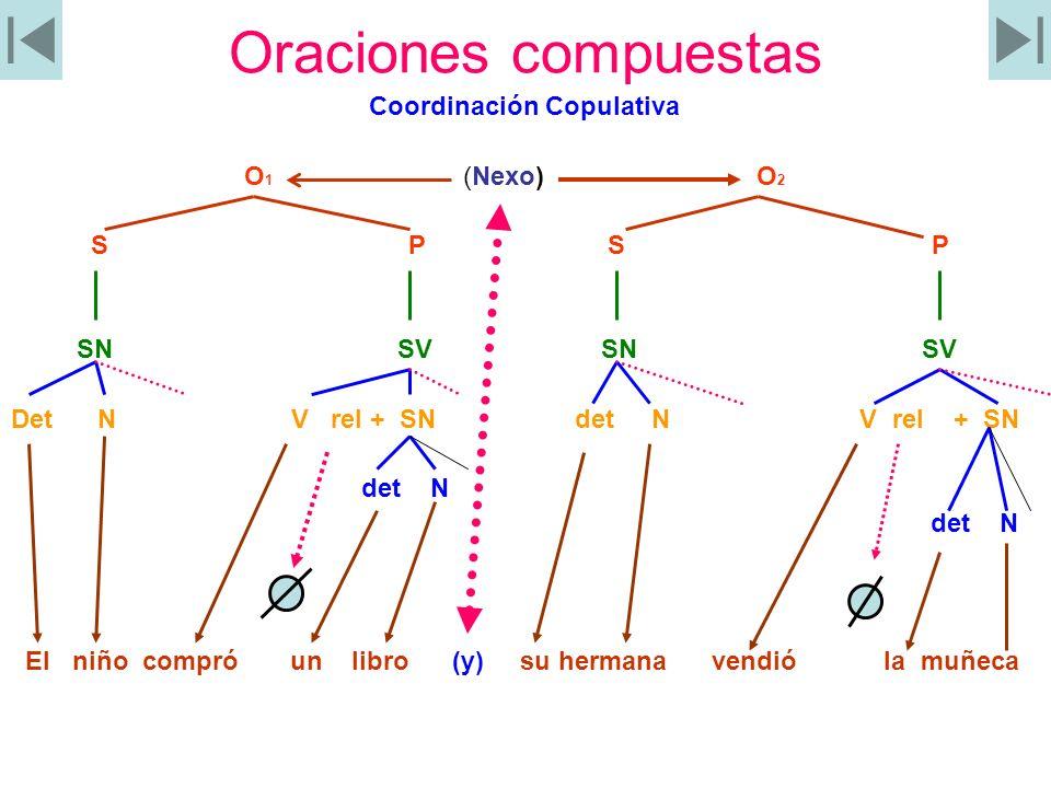 Oraciones compuestas Coordinación Copulativa O1 (Nexo) O2 S P S P