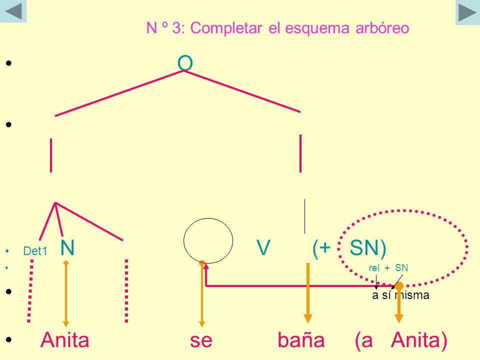 N º 3: Completar el esquema arbóreo
