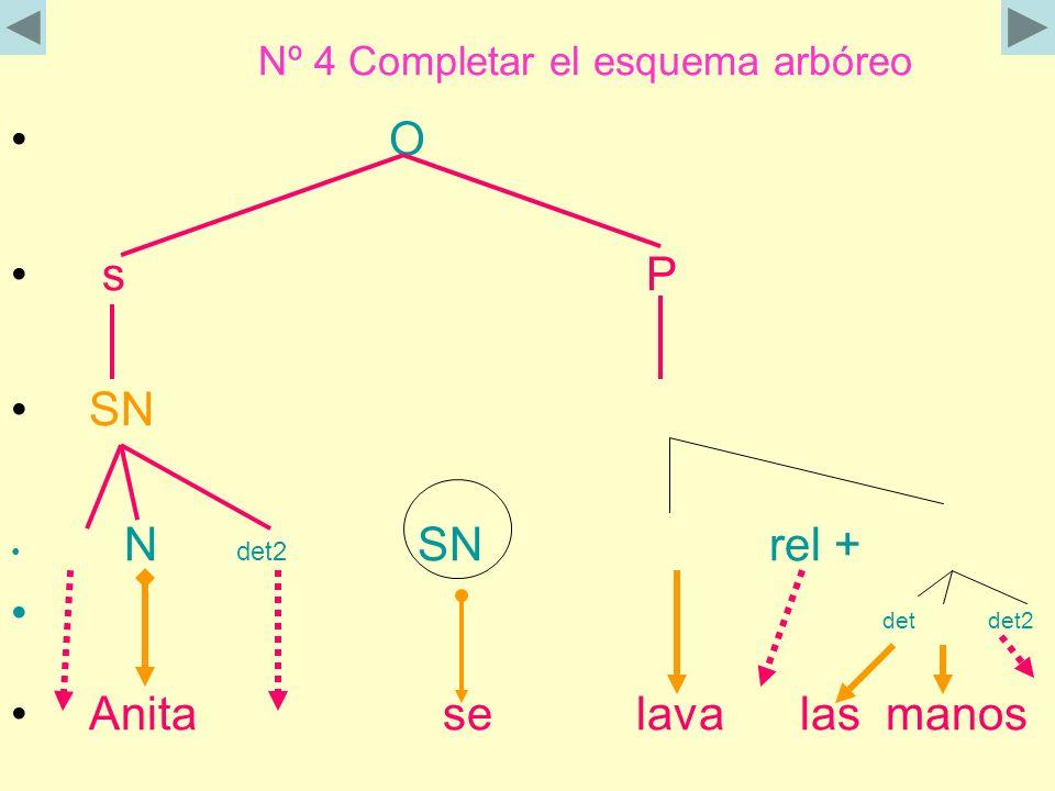 Nº 4 Completar el esquema arbóreo