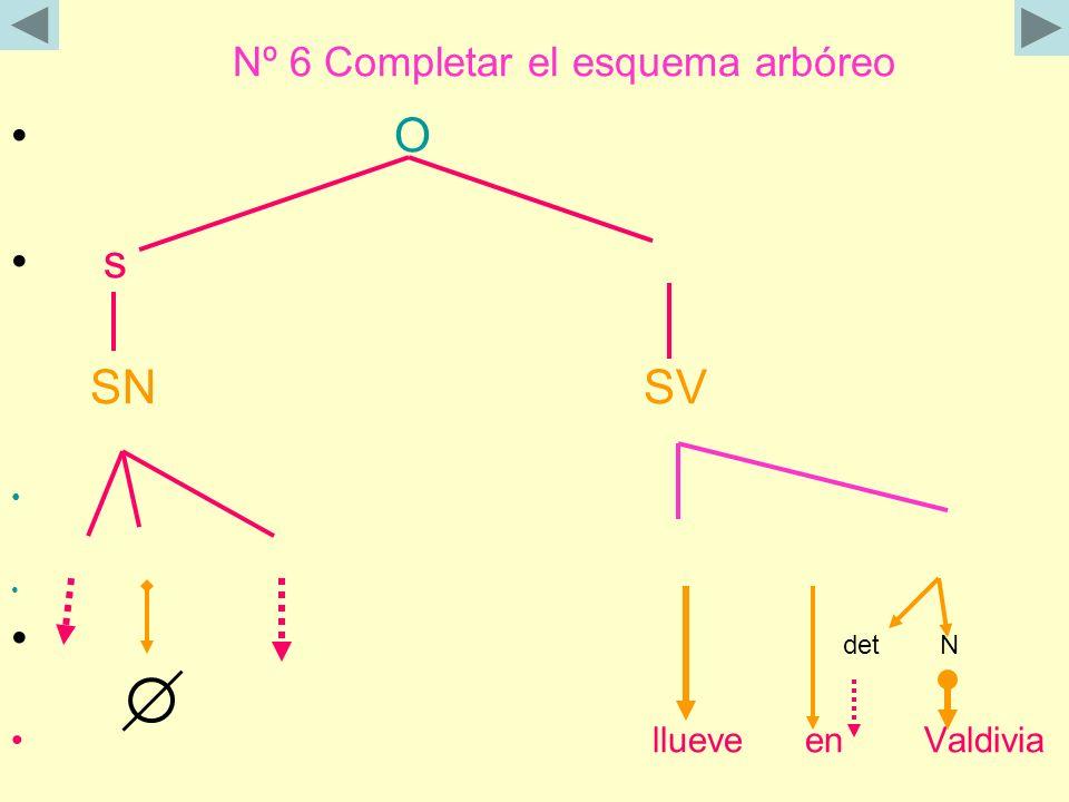 Nº 6 Completar el esquema arbóreo