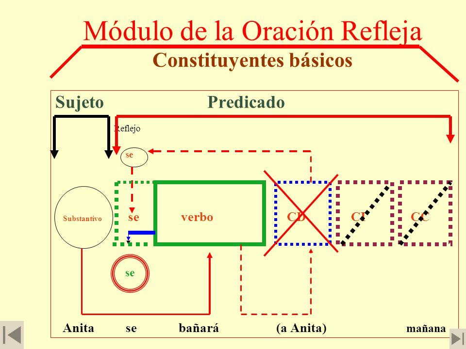 Módulo de la Oración Refleja Constituyentes básicos