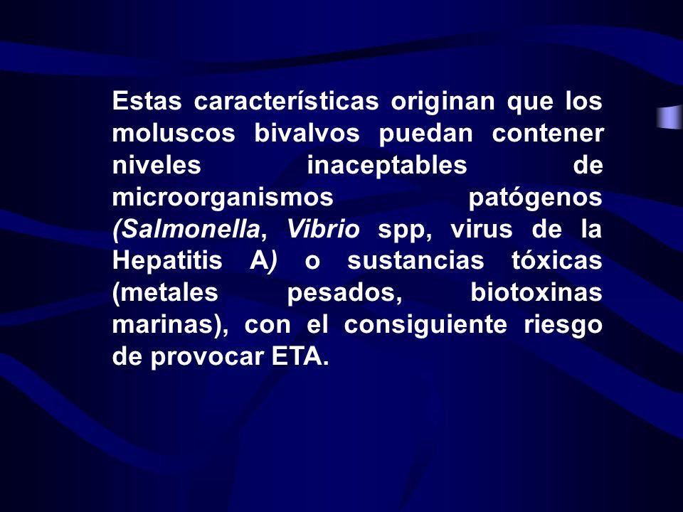 Estas características originan que los moluscos bivalvos puedan contener niveles inaceptables de microorganismos patógenos (Salmonella, Vibrio spp, virus de la Hepatitis A) o sustancias tóxicas (metales pesados, biotoxinas marinas), con el consiguiente riesgo de provocar ETA.