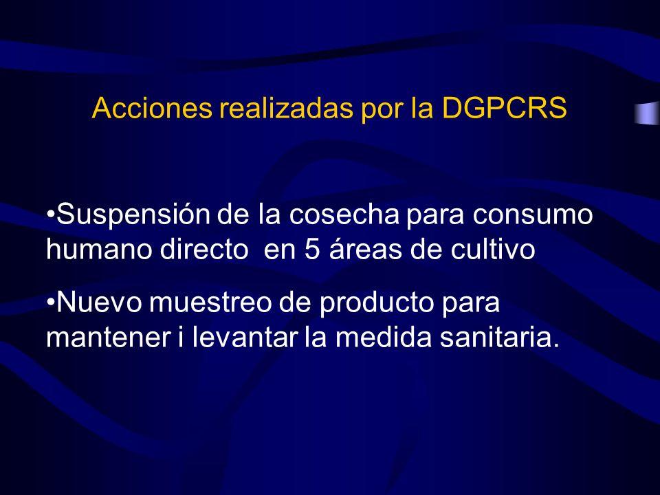 Acciones realizadas por la DGPCRS