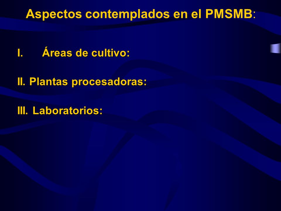 Aspectos contemplados en el PMSMB: