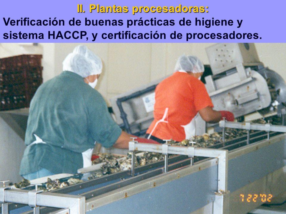 II. Plantas procesadoras: