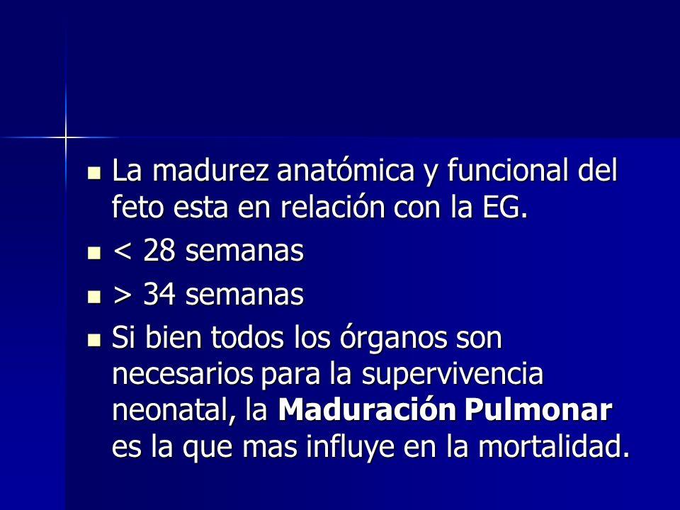La madurez anatómica y funcional del feto esta en relación con la EG.