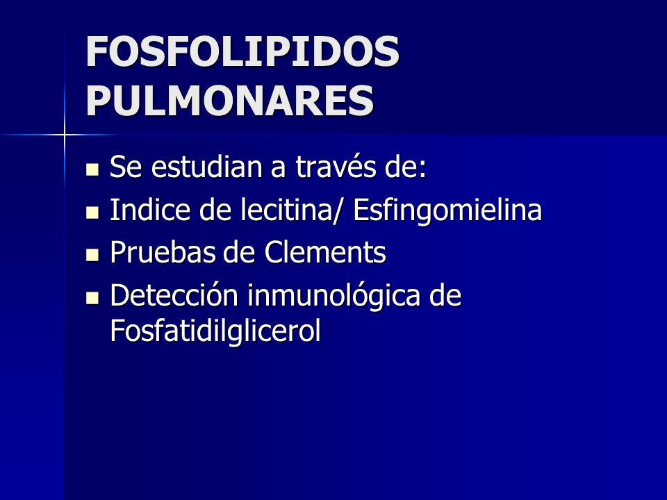 FOSFOLIPIDOS PULMONARES