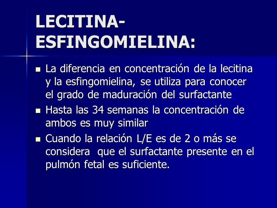 LECITINA-ESFINGOMIELINA: