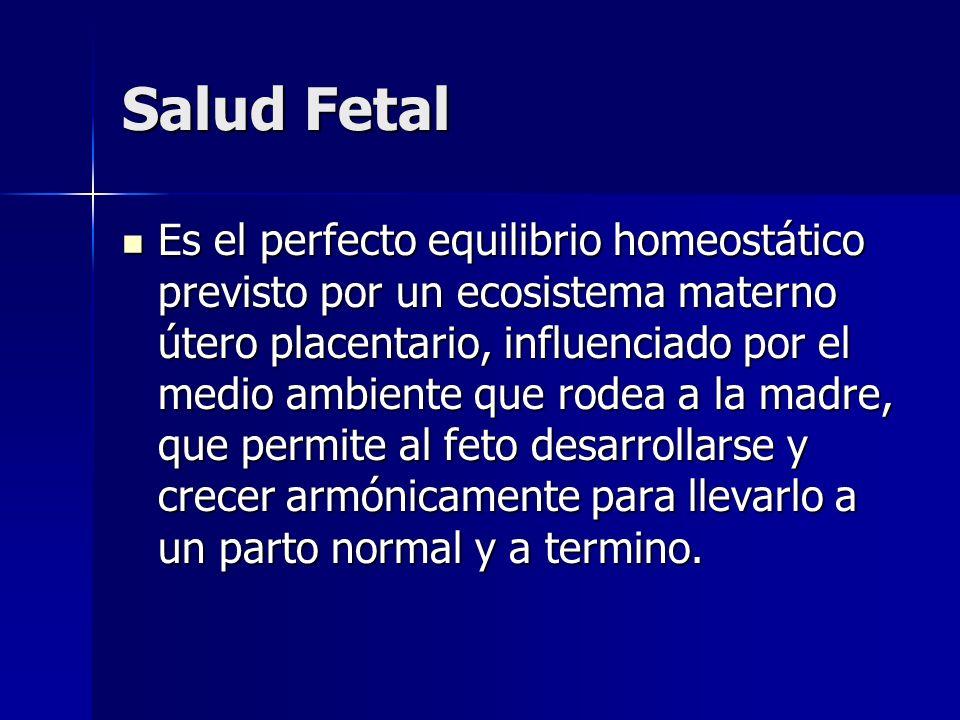 Salud Fetal