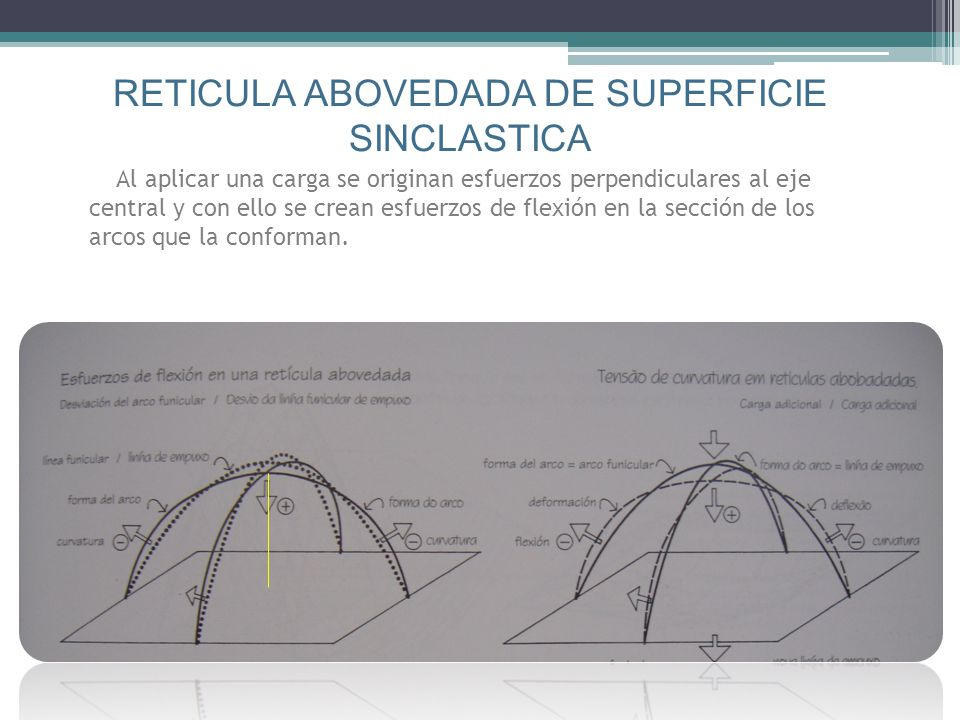 RETICULA ABOVEDADA DE SUPERFICIE SINCLASTICA