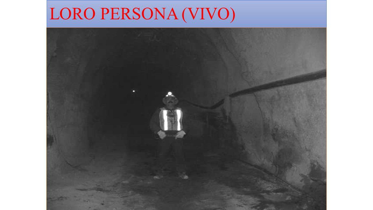 LORO PERSONA (VIVO)
