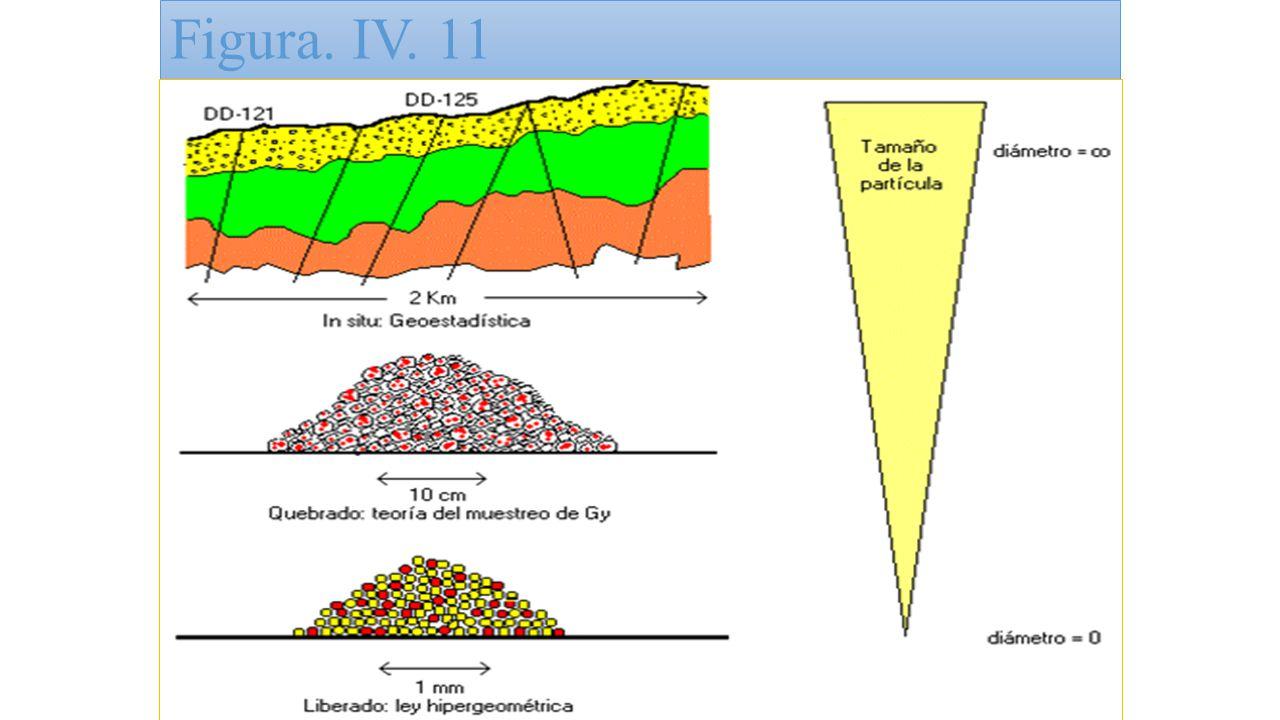 Figura. IV. 11