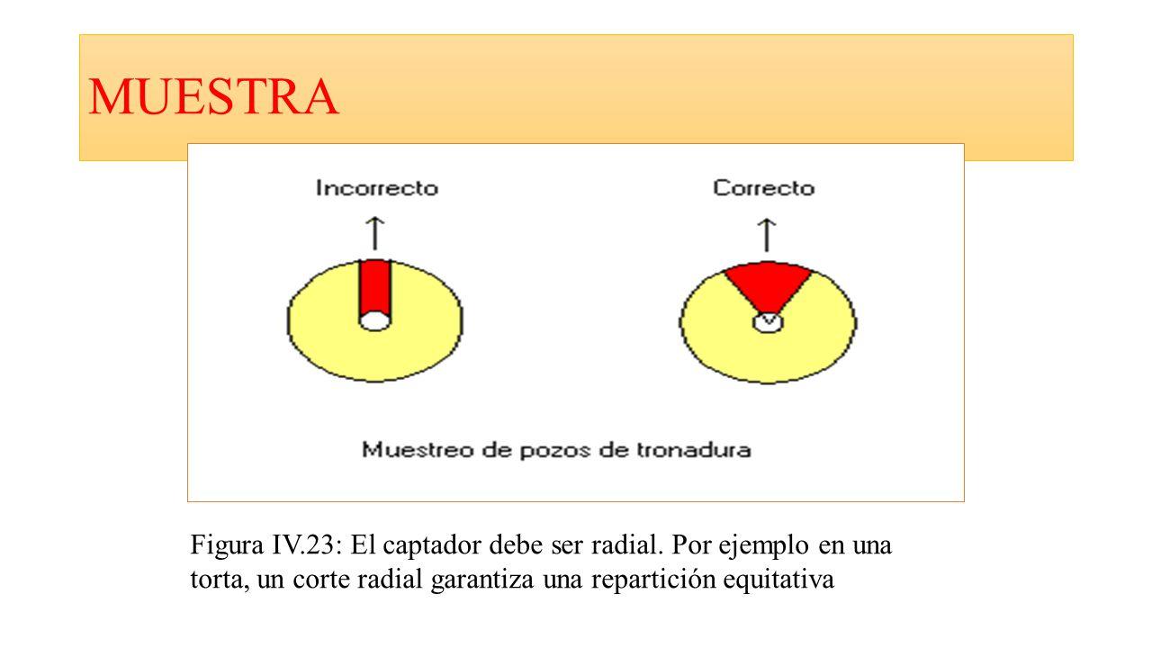 MUESTRA Figura IV.23: El captador debe ser radial.