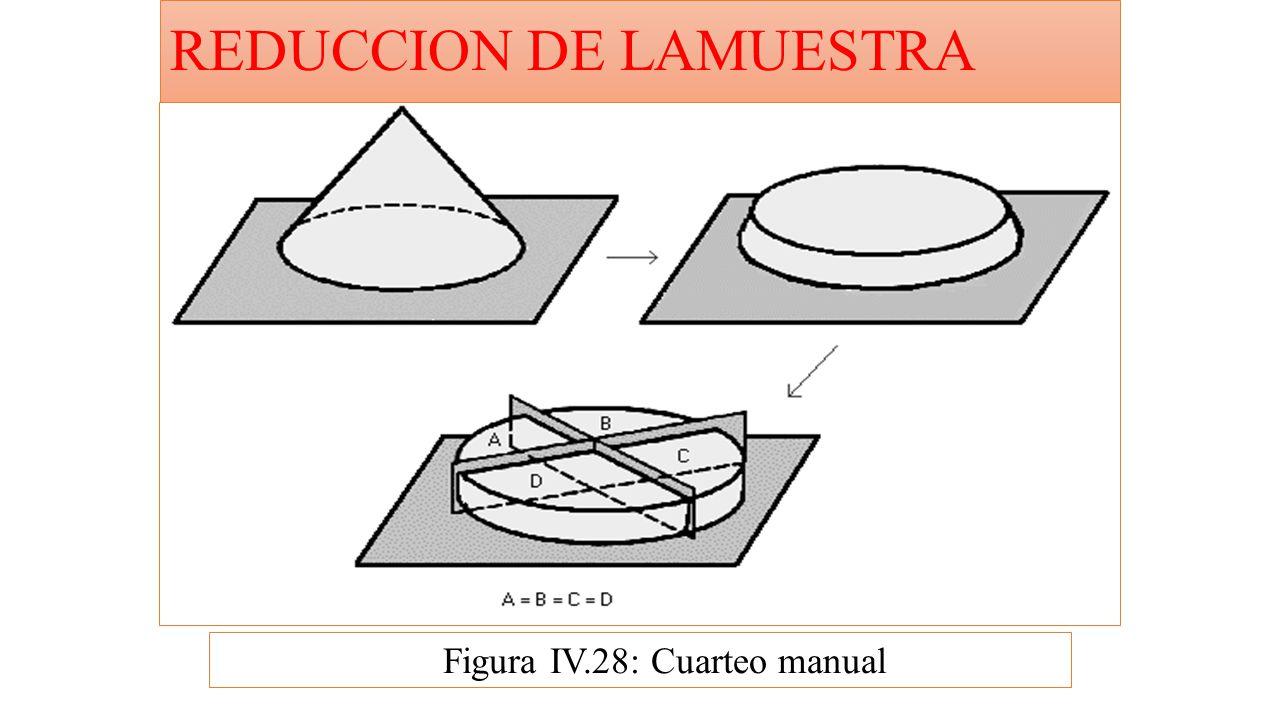 REDUCCION DE LAMUESTRA