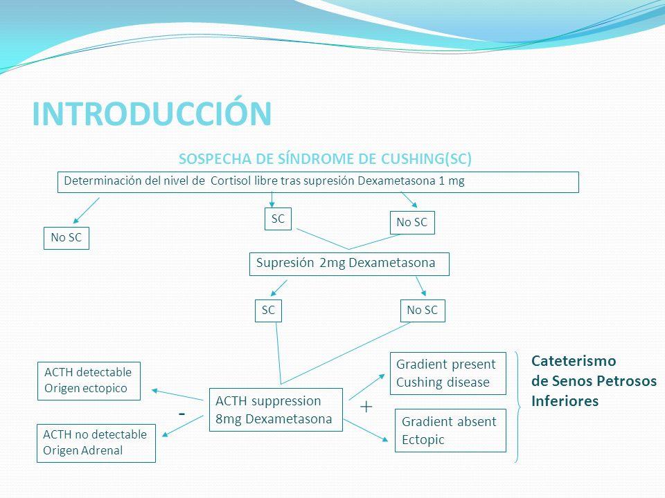 INTRODUCCIÓN + - Cateterismo de Senos Petrosos Inferiores