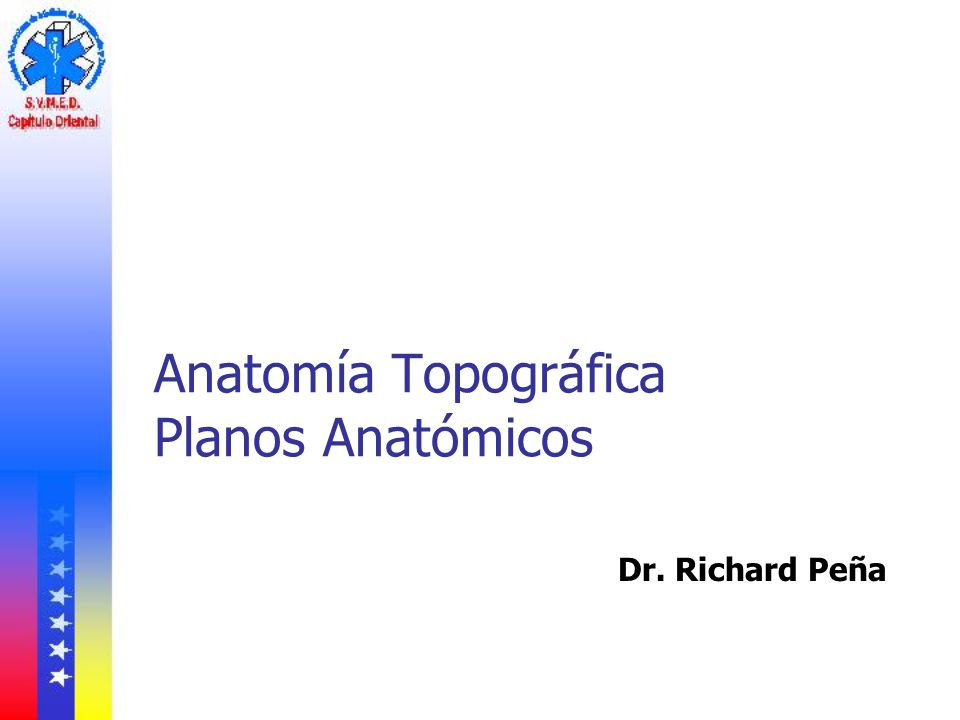 Anatomía Topográfica Planos Anatómicos