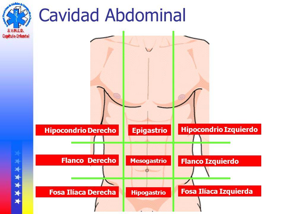 Cavidad Abdominal Hipocondrio Derecho Epigastrio Hipocondrio Izquierdo