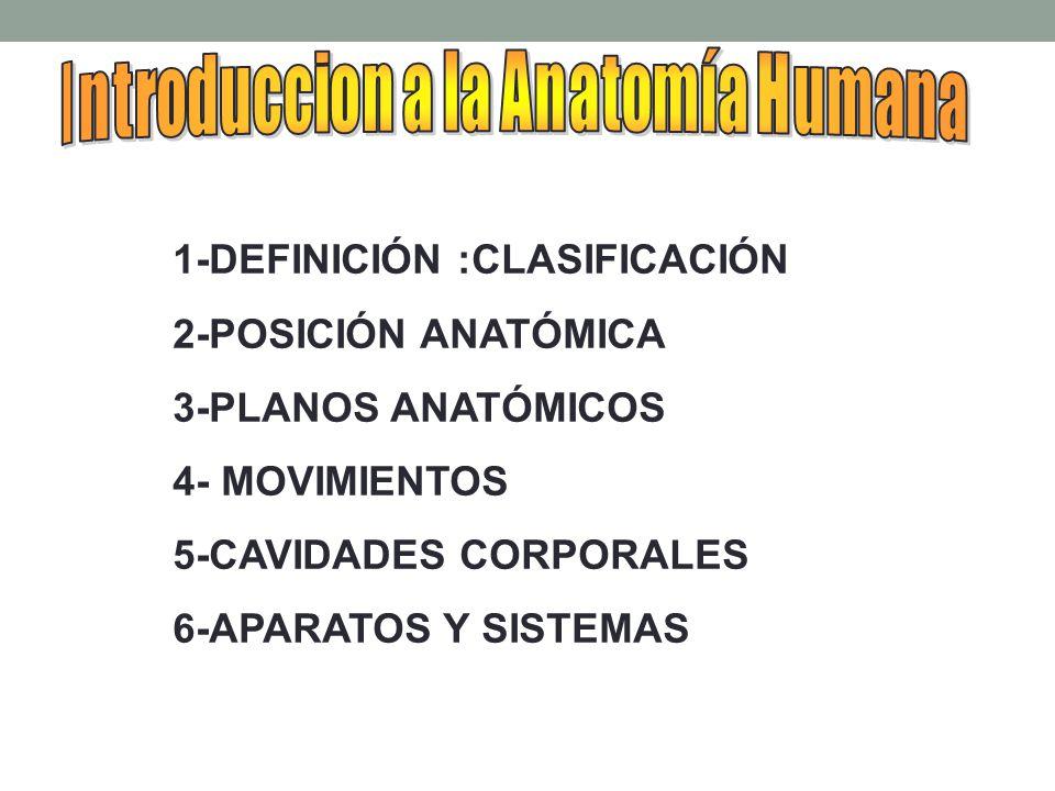 Introduccion a la Anatomía Humana