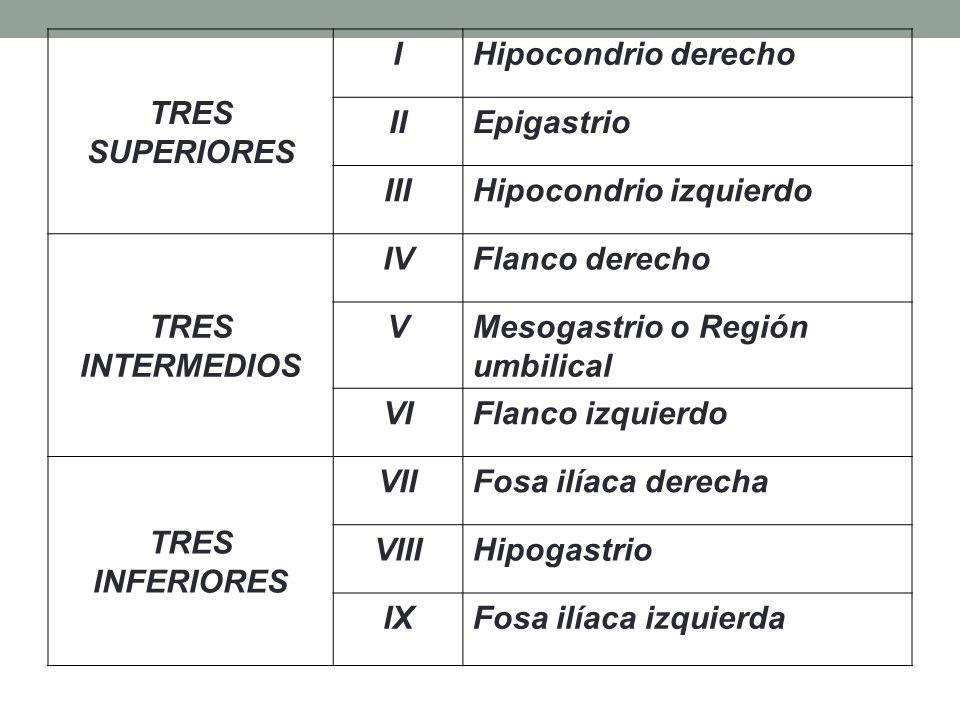 TRES SUPERIORES I. Hipocondrio derecho. II. Epigastrio. III. Hipocondrio izquierdo. TRES INTERMEDIOS.