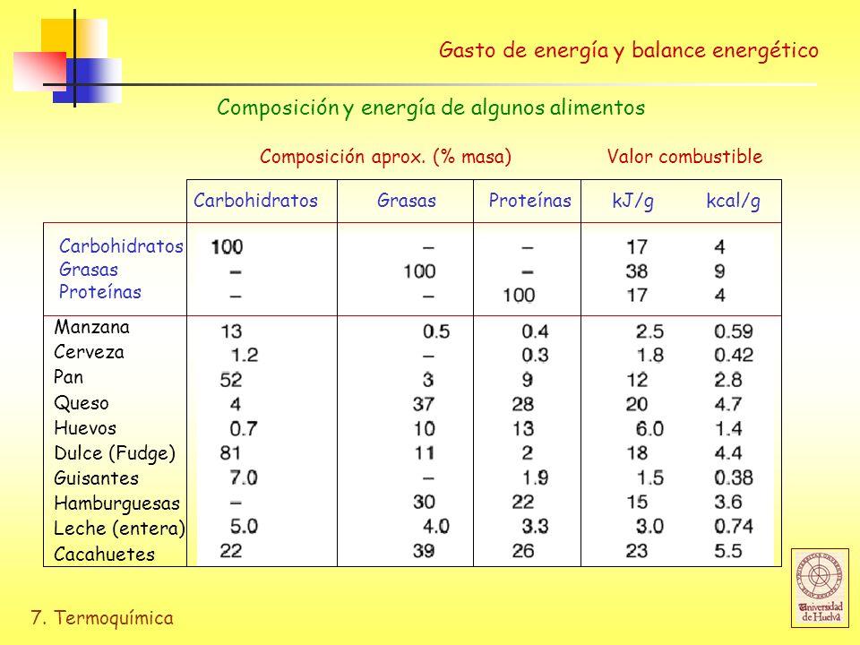 Gasto de energía y balance energético