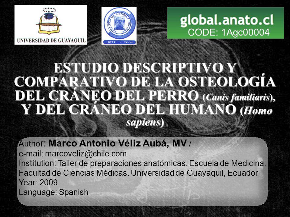 CODE: 1Agc00004 ESTUDIO DESCRIPTIVO Y COMPARATIVO DE LA OSTEOLOGÍA ...
