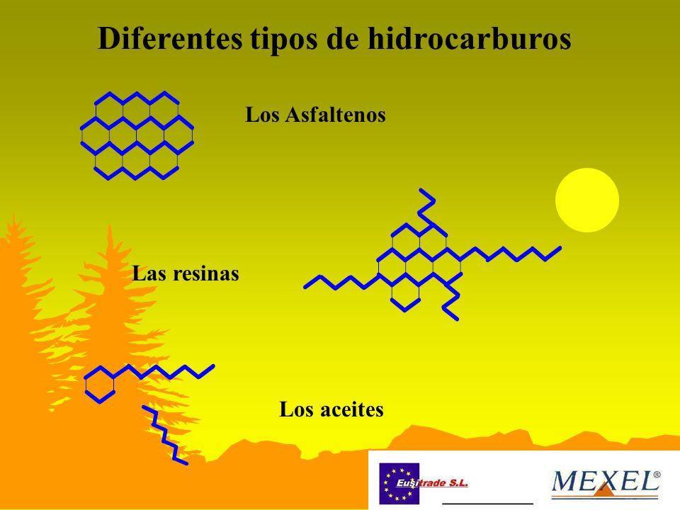 Diferentes tipos de hidrocarburos