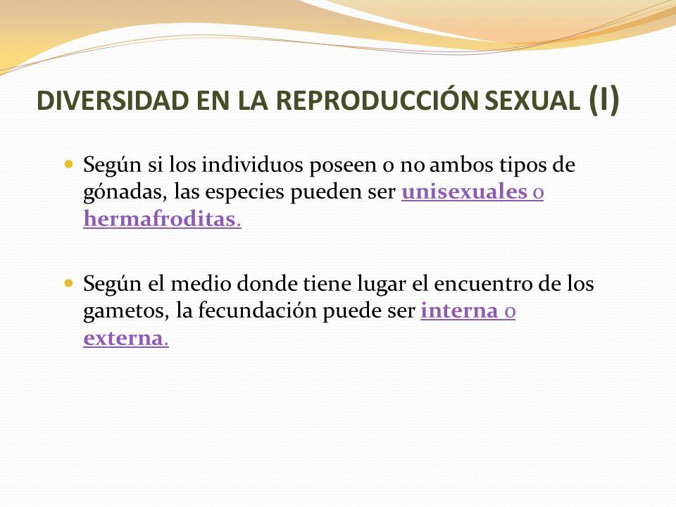 DIVERSIDAD EN LA REPRODUCCIÓN SEXUAL (I)