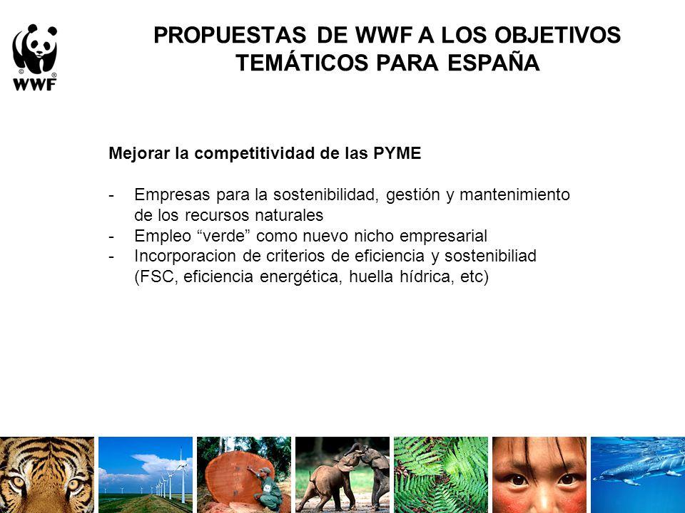 Contemporáneo Empresas Sostenibles Espaa Festooning - Ideas para el ...