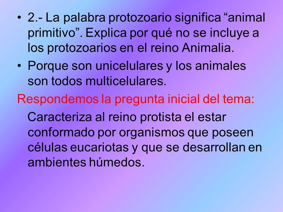 2. - La palabra protozoario significa animal primitivo