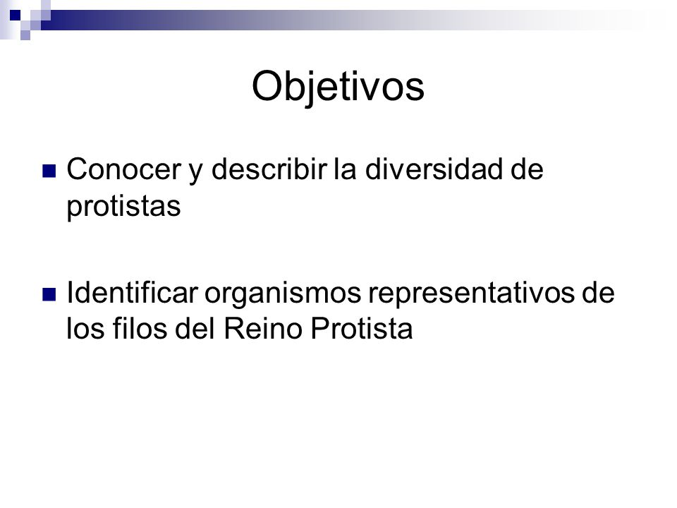 Objetivos Conocer y describir la diversidad de protistas
