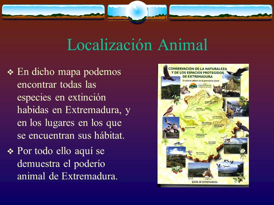 Localización Animal