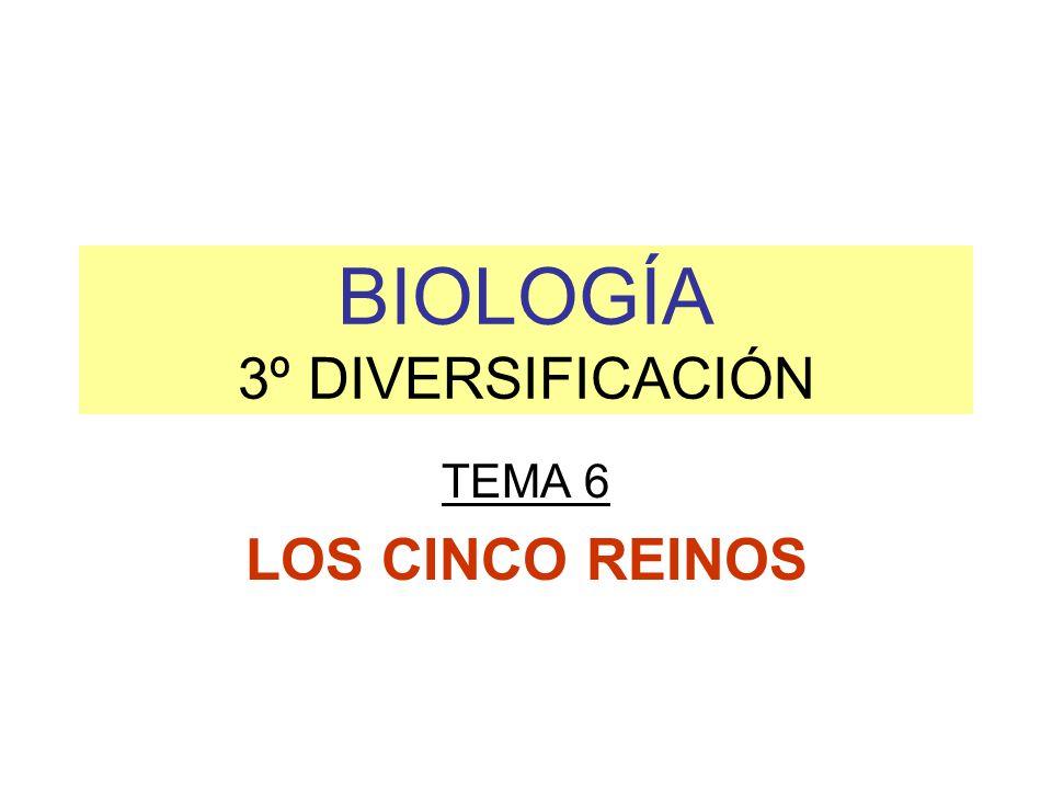 BIOLOGÍA 3º DIVERSIFICACIÓN