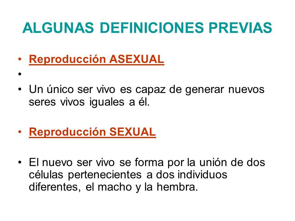 ALGUNAS DEFINICIONES PREVIAS