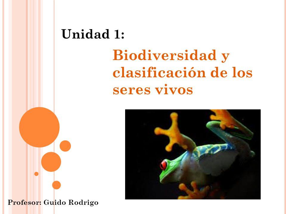 Biodiversidad y clasificación de los seres vivos