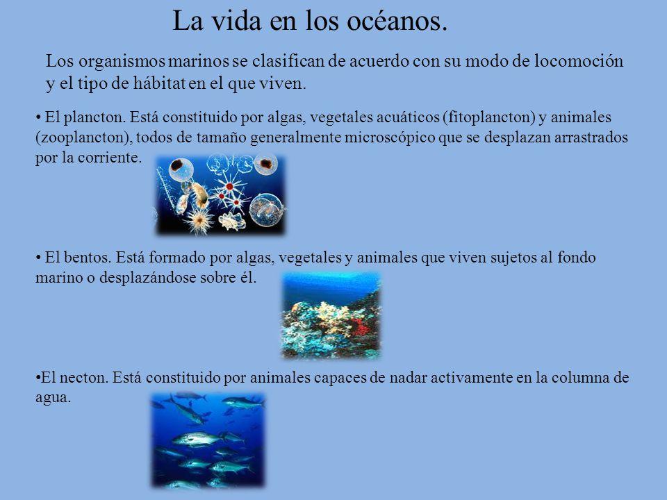 La vida en los océanos. Los organismos marinos se clasifican de acuerdo con su modo de locomoción y el tipo de hábitat en el que viven.