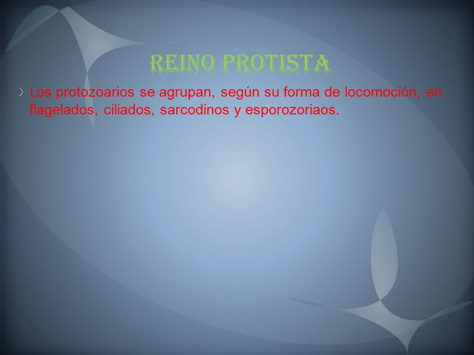 Reino Protista Los protozoarios se agrupan, según su forma de locomoción, en flagelados, ciliados, sarcodinos y esporozoriaos.