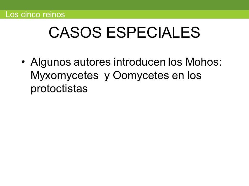 Los cinco reinos CASOS ESPECIALES.